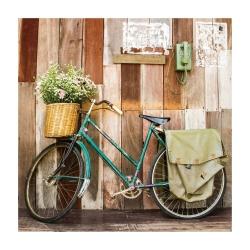 Cuadro de bicicleta vintage verde de lienzo para decoración de 80 x 80 cm France