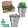 Pack 12 velas cactus 6.30 x 5.80 cm