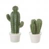 Macetas ceramica cactus verde decorativa .