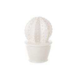 Maceta cactus blanco ceramica