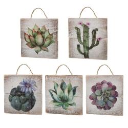 Set 5 cuadro abeto cactus 15x15cm