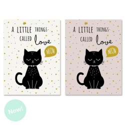 Set 2 cuadro lienzo gatos little 30x40 cm