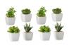 Pack 4 Cactus artificial plástico 10 cm maceta de porcelana.
