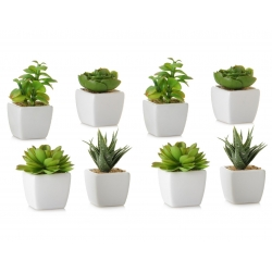 Pack 8 Cactus artificial plástico 10 cm maceta de porcelana.