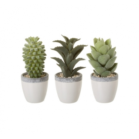 Pack 3 cactus artificial en maceta porcelana