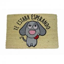 Felpudo Perro Esperando, Coco, 60x40