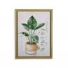 Cuadro planta verde hojas