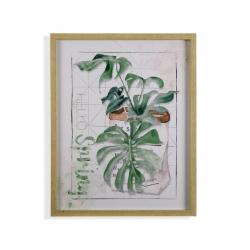 Cuadro planta Hojas verde