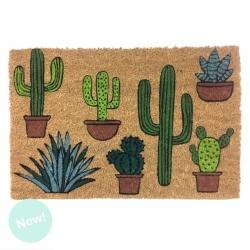 Felpudo original de cactus para Entrada 40x60 cm