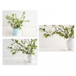 Set 3 cuadro lienzo macetas flores 40X30 cm