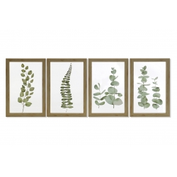 Conjunto de cuadros acrilico con marco de madera botanica - 20x30 cm cada uno