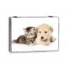 Tapa de contador decorativas animal perro gato gris