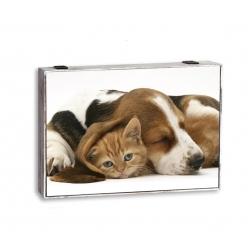 Tapa de contador decorativas animal perro gato marron