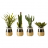 Pack 4 Cactus artificial en maceta de cristal .