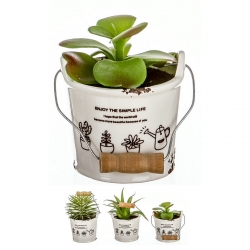 Pack 3 Cactus artificial en maceta porcelana .