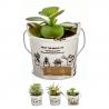 Pack 3 Cactus artificial en maceta porcelana .