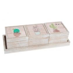 Cajas original decoradas de madera cactus con bandeja .
