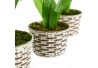 Set 4 Planta jacinto poliester con maceta de plástico .