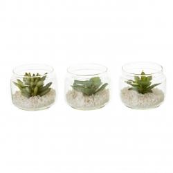 Pack 3 cactus artificial plástico en maceta de cristal