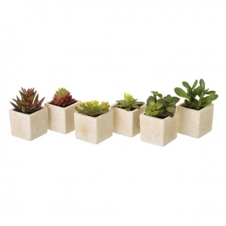 Pack 6 cactus artificial plástico en maceta de arena .