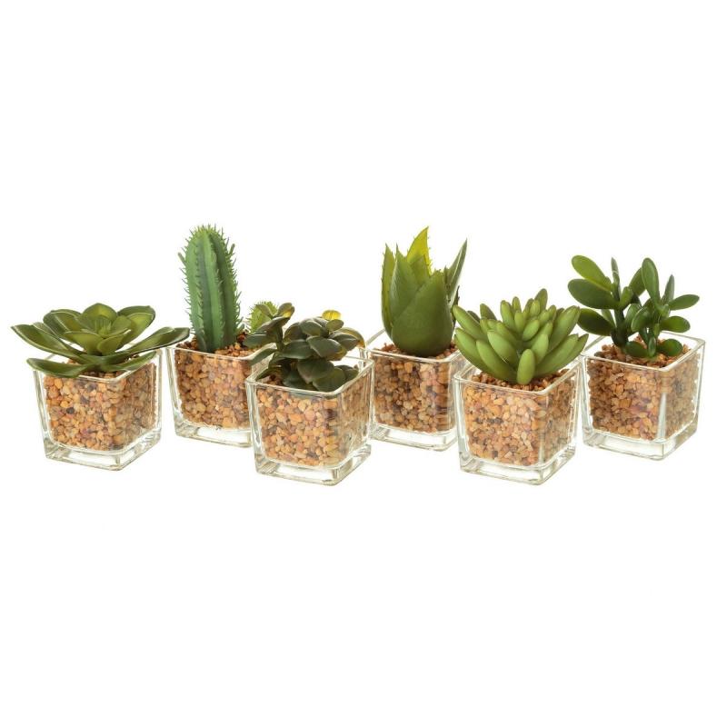 Pack 6 cactus artificial pl stico en maceta de cristal - Cactus en macetas pequenas ...