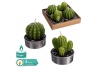 S/4 vela tealight cactus 4 x 4,30 cm