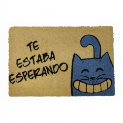 Felpudo con Diseño Gatito Te Estaba Esperando, Coco, 60 x 40 cm