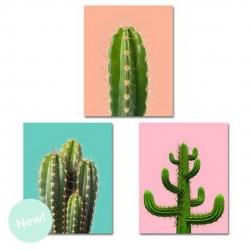 Set 3 lienzo cactus para dormitorio de 40x50 cm
