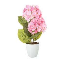 Planta hortensia rosa algodon en maceta de plastico 12 x 44 cm.