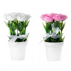 Pack 2 Plantas rosas poliester en maceta de plastico .
