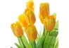 Pack 3 Planta tulipan poliester en maceta de madera .