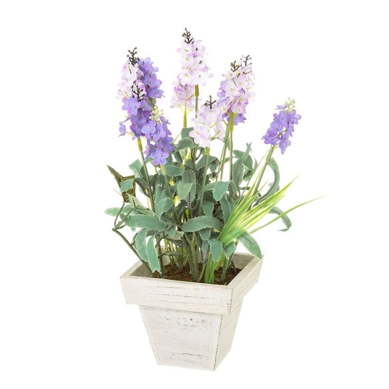 Donde plantar lavanda excellent flores de la lavanda with - Cuidados lavanda en maceta ...