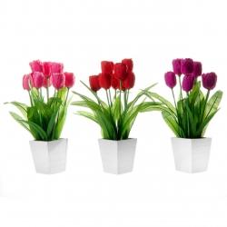 Pack 3 Planta tulipa decorada maceta de madera .