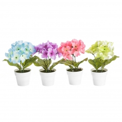 Pack 4 Planta hortensia decorada en maceta .