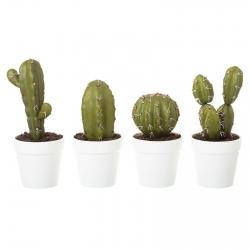 Pack 4 cactus artificial en maceta de plástico .